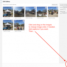 GALLERIES: Step 4 Drag and drop to reorder or add captions if you wish. Click Insert Gallery when finished.