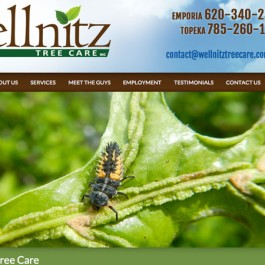 Wellnitz Tree Care Website