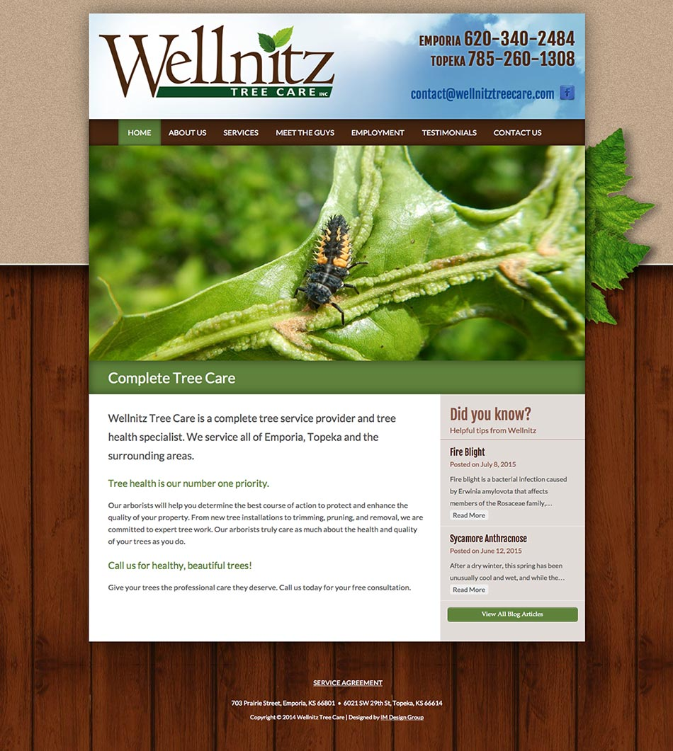 wellnitz-website